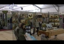 Embedded thumbnail for Festa della caccia 2010