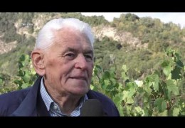 Embedded thumbnail for 11/09/19 Tempo di vendemmia per la Cave des Onze Communes di Aymavilles